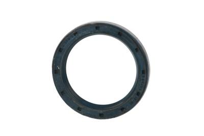 Radialdichtring für Mahle Kompressor / 1287812
